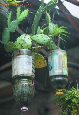 """""""这些饮料瓶做花盆"""